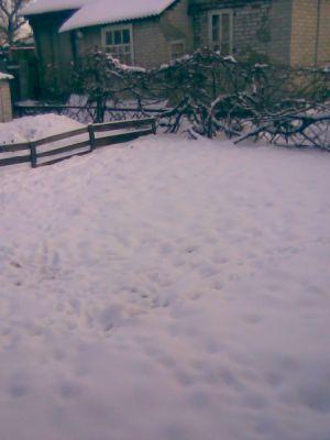 Фото пристройки,двора